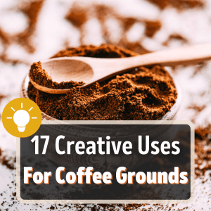 uses for coffee grounds featured